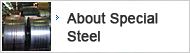 About Special Steel